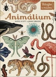 Scott, Katie; Broom, Jenny - Animálium